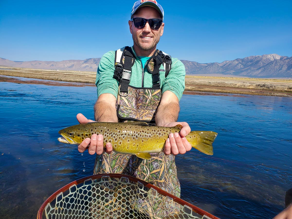 A brown trout from the Upper Owens River with Sierra Drifters