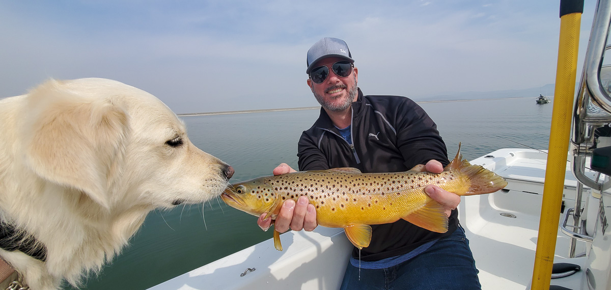 A smiling angler holding a brown trout from Crowley Lake as a white dog investigates the fish.