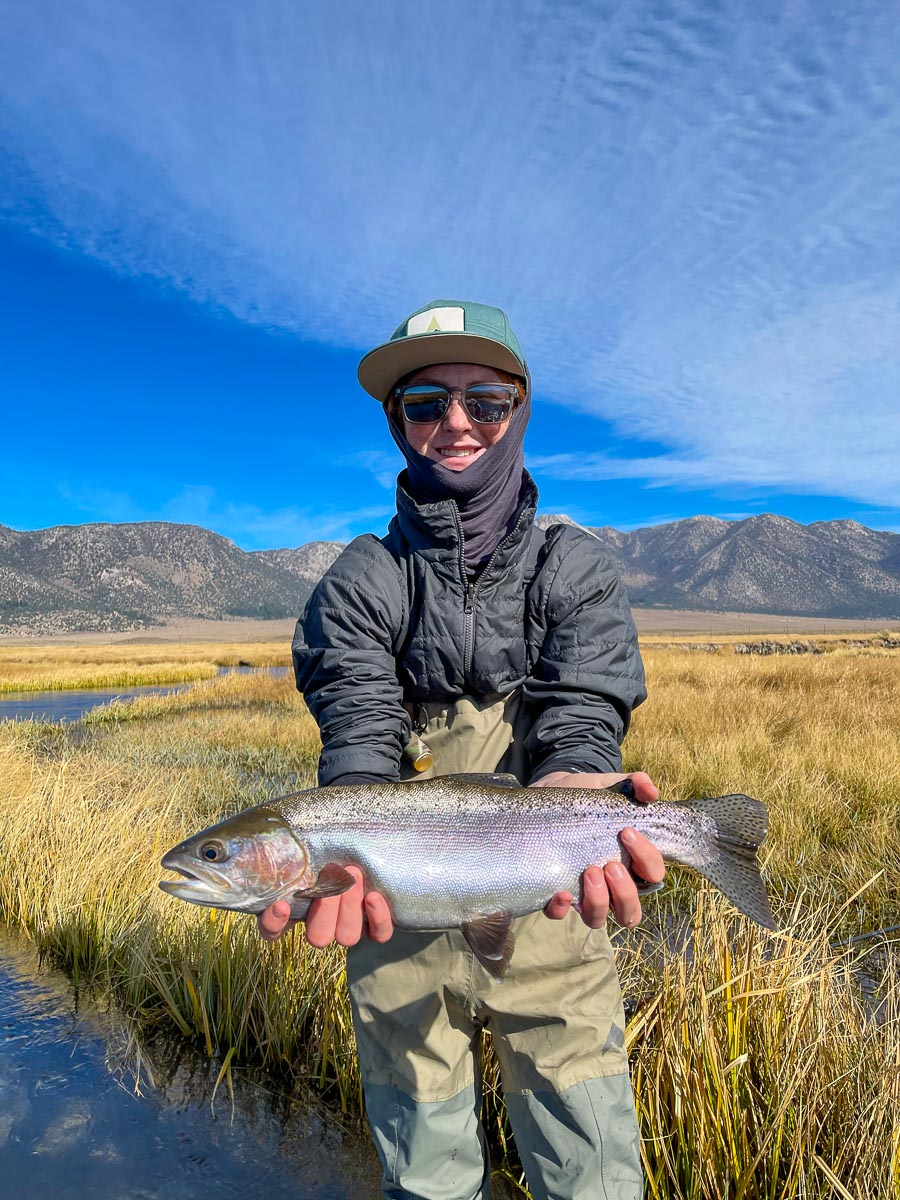 A fly fisherman displaying a giant rainbow trout from the Upper Owens River.