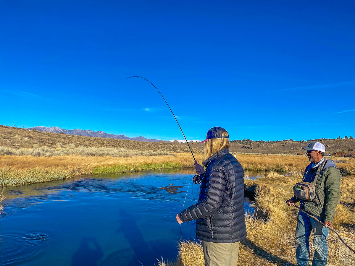 A lady fly fisher is reeling in a trout during the fall on Hot Creek while her guide assists her.