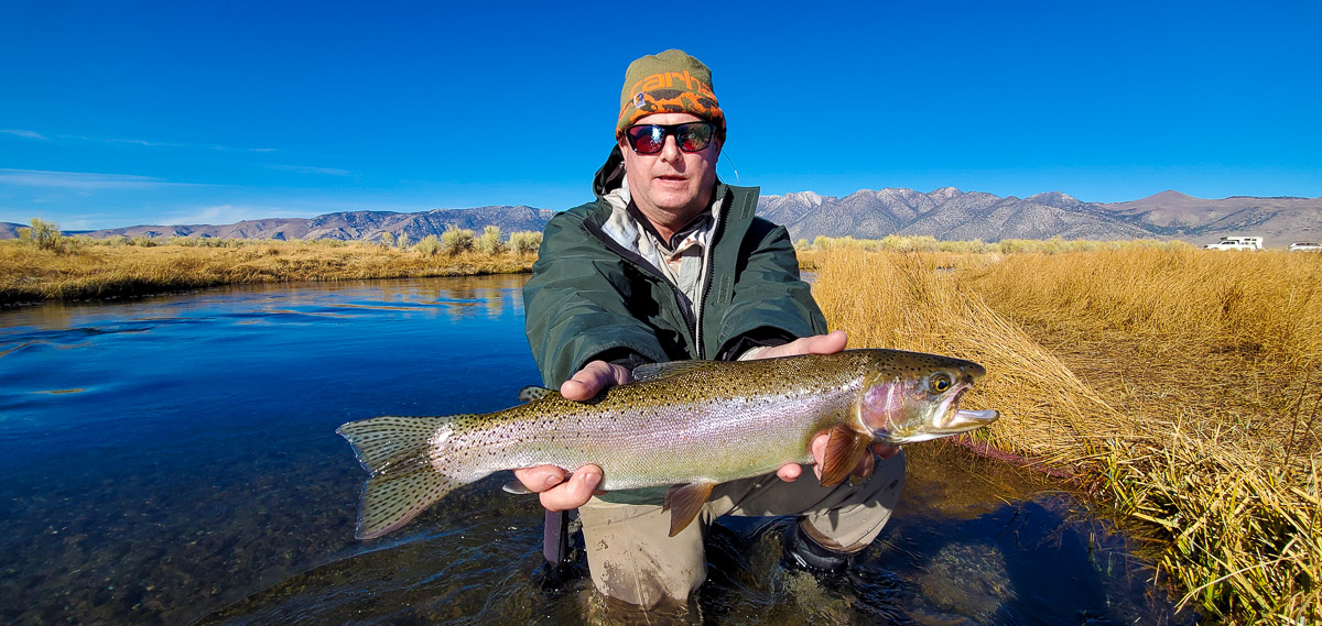 A fly fisherman holding a rainbow trout during the fall spawn from the Upper Owens River..