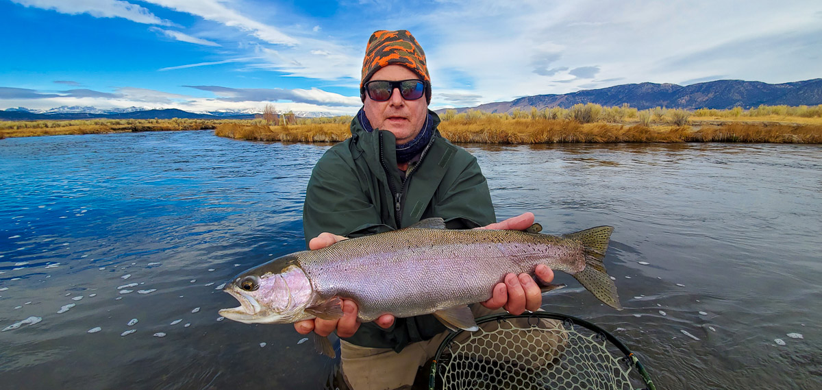A fly fisherman holding a rainbow trout during the fall spawn from the Upper Owens River.