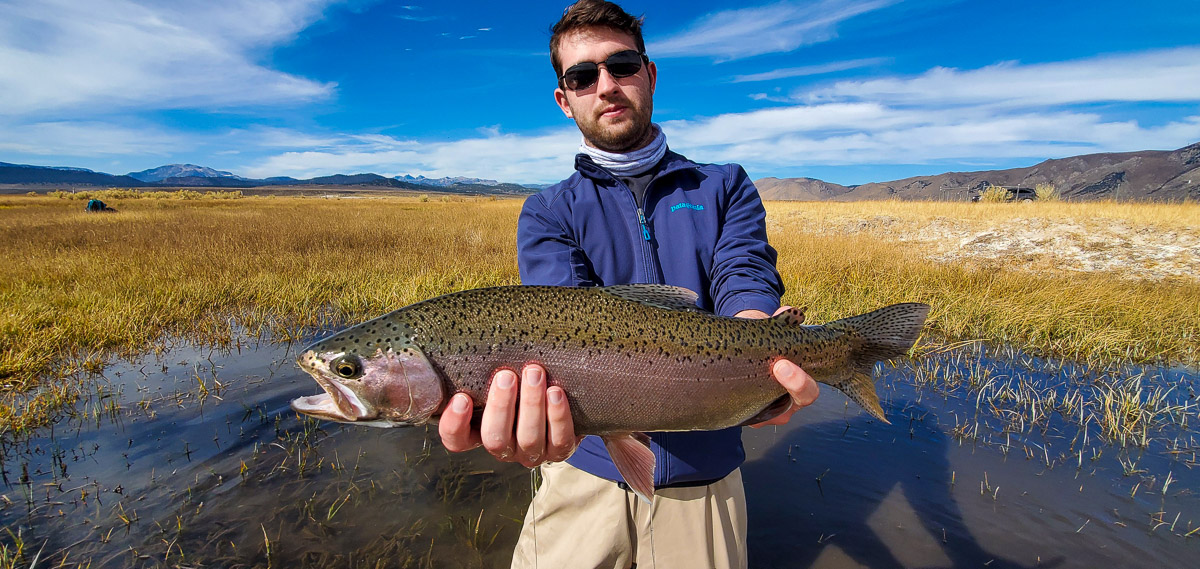 A fly fisherman holding a rainbow trout from the Upper Owens River in early November.