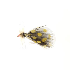 A tied fly with black and yellow feathers used for fly fishing.