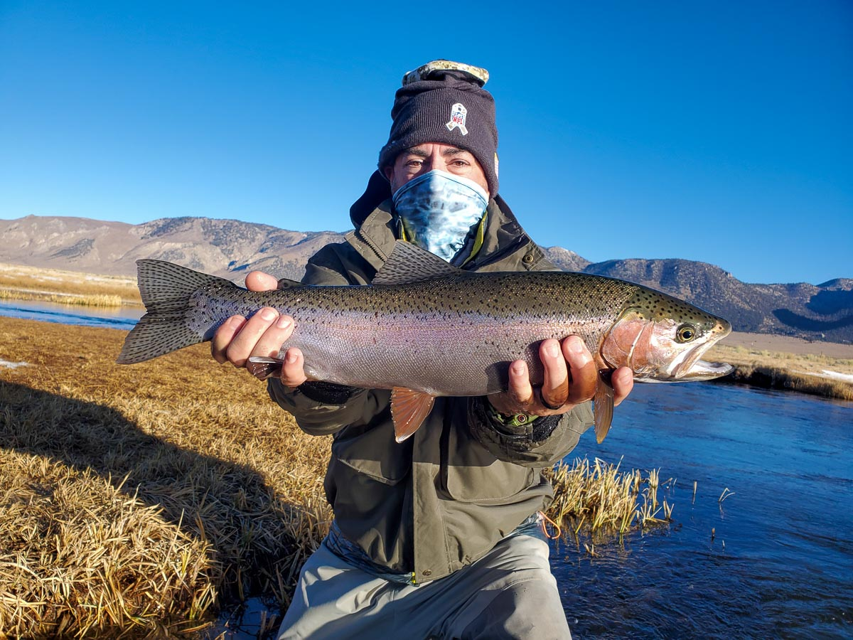 A lady fly fisherman holding a rainbow trout during the fall spawn from the Upper Owens River.