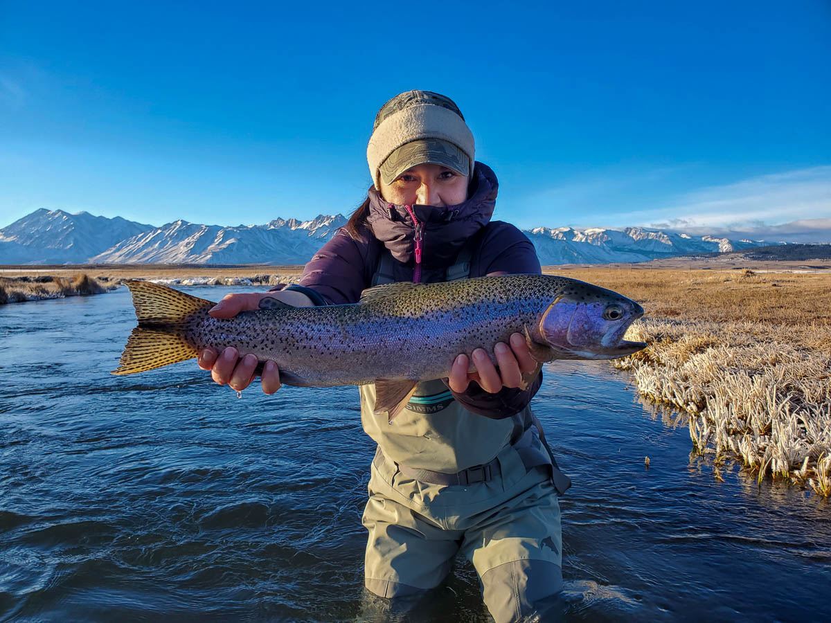 A lady fly angler holding a rainbow trout during the fall spawn from the Upper Owens River.
