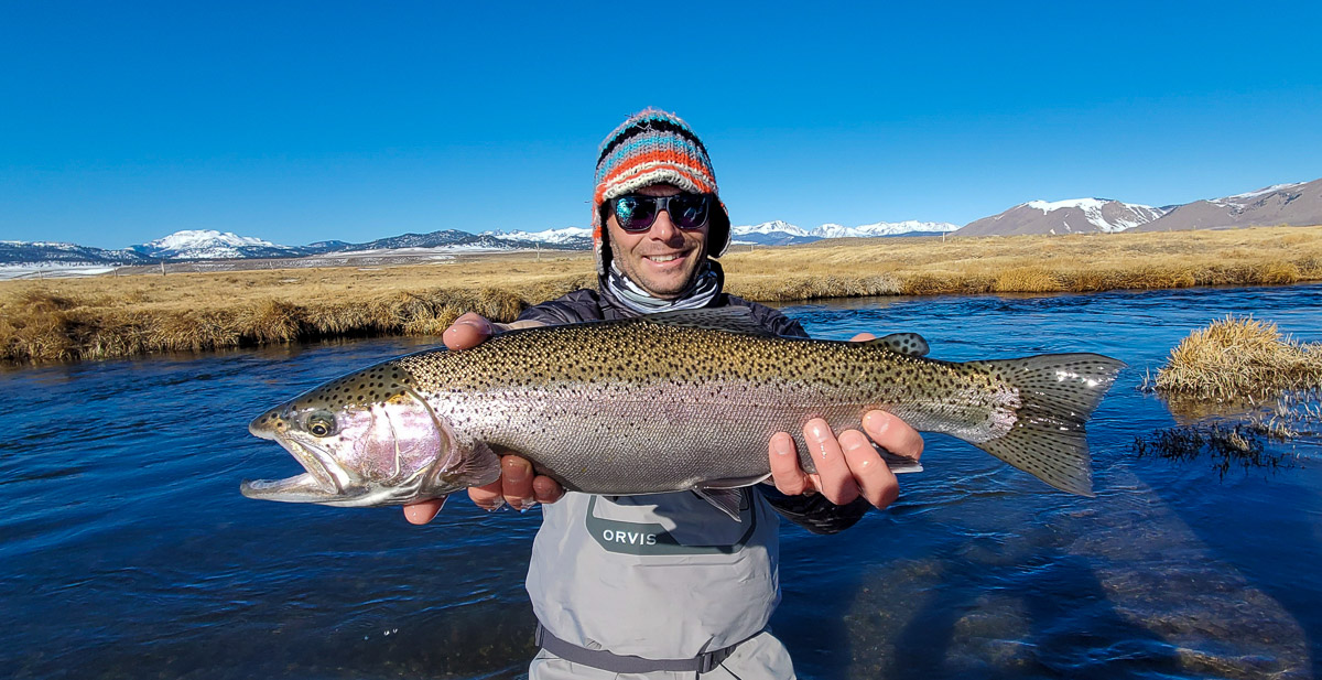 A fly fisherman holding a rainbow trout in spawning colors from the Upper Owens River.