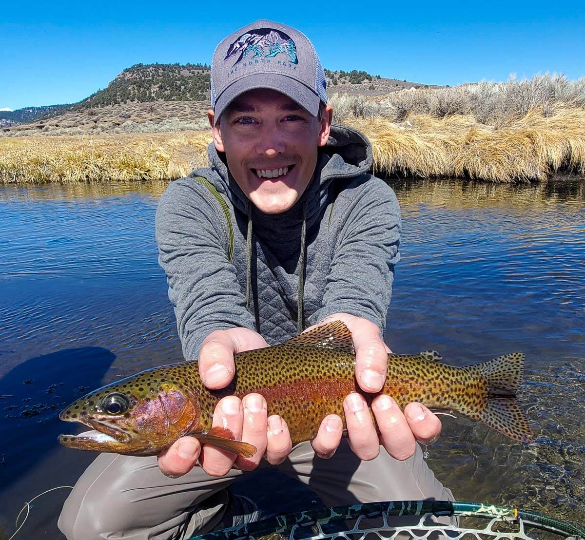 A fly fisherman with a grey hat holding a rainbow trout in spawning colors in a clear stream.