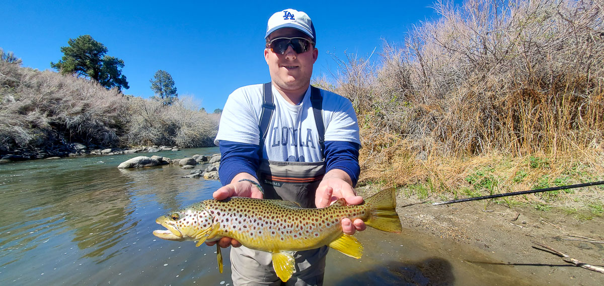A fly fisherman wearing an LA Dodgers hat while holding a large brown trout in a river.