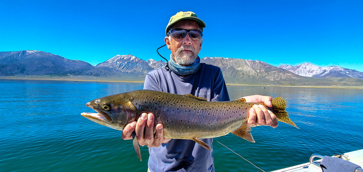 A fly fisherman with a hat and a purple long sleeve shirt holding a large rainbow trout in a boat on a lake.