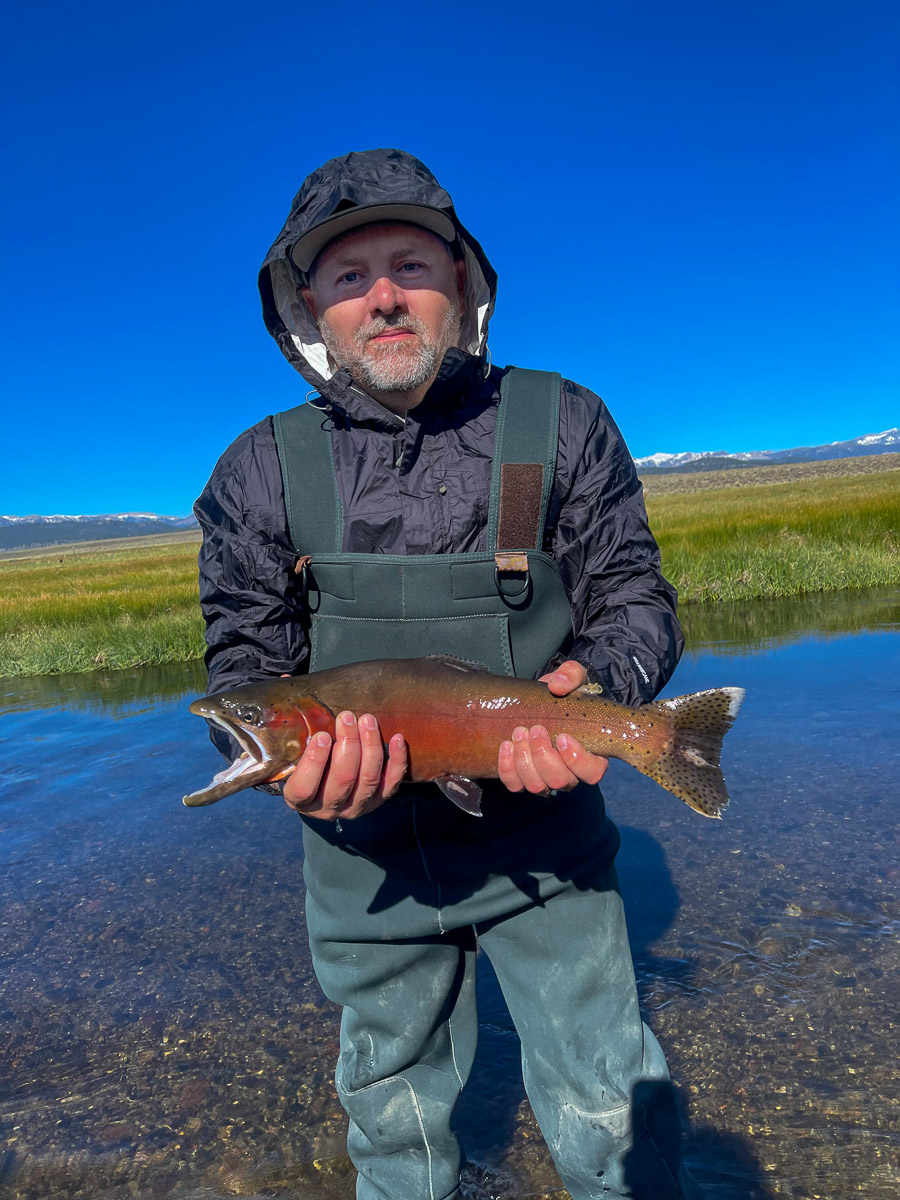 A fly fisherman standing in a river holding a cutthroat trout in spawning colors.