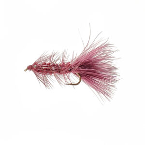 A streamer fly for fishing.