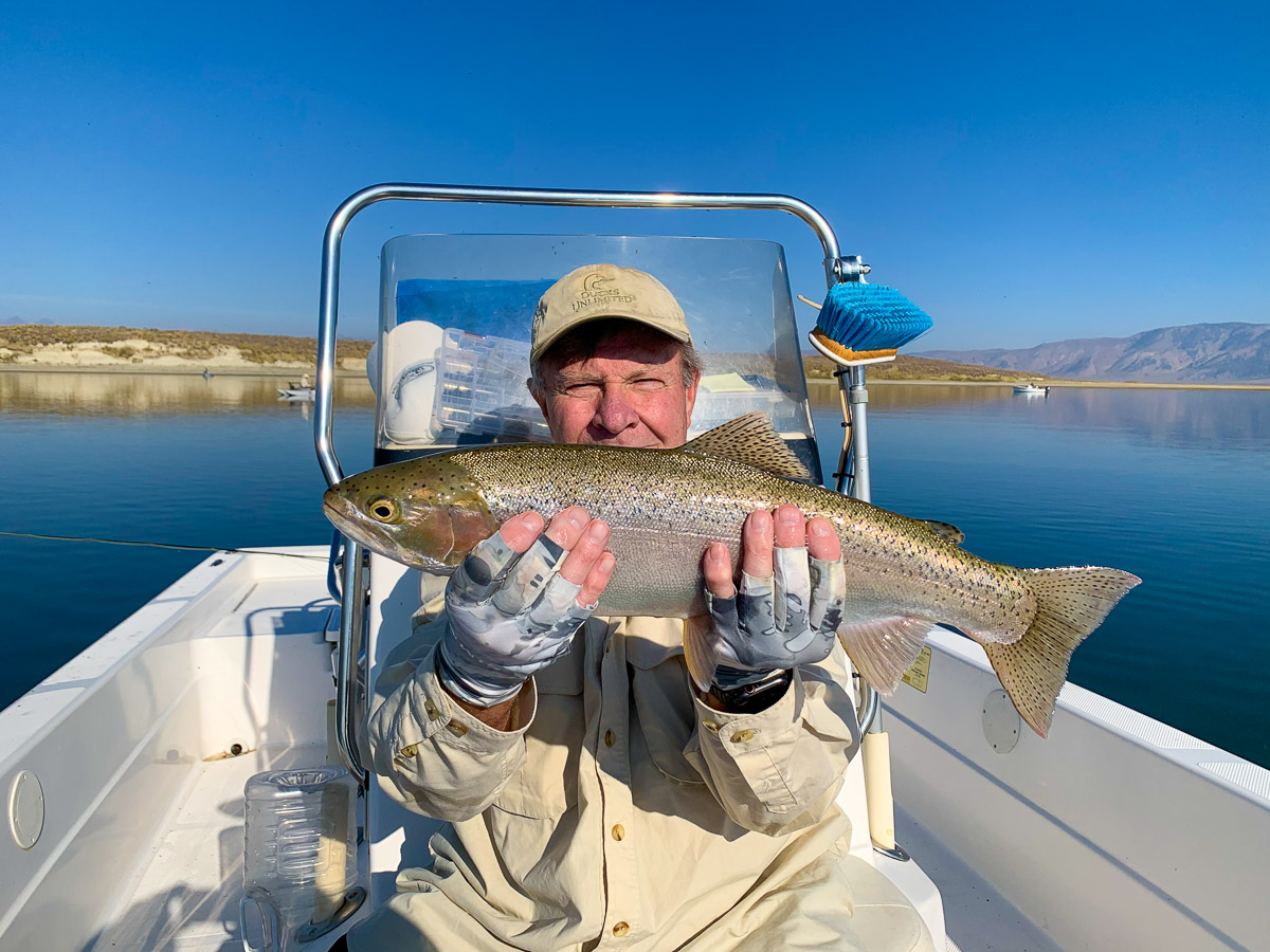 A fly fisherman holding a rainbow trout from Crowley Lake.